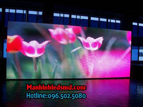 Màn hình LED P2.5 sân khấu tiệc cưới P2.5